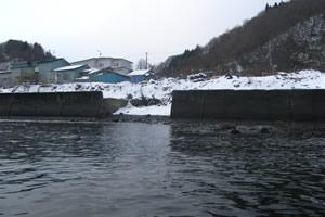 石倉海岸老朽化対策緊急工事(横山地先) 着工前