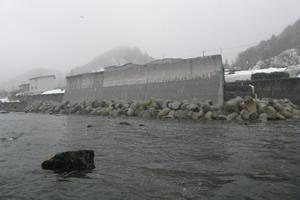 石倉海岸老朽化対策緊急工事(横山地先) 完 成