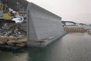 石倉海岸老朽化対策緊急工事(横山地先) 海岸擁壁施工完了