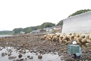 石倉海岸老朽化対策緊急工事(横山地先) 本工事01 着工前