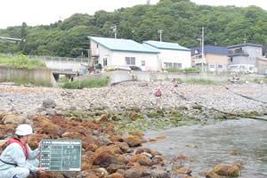 石倉海岸老朽化対策緊急工事(横山地先) 附帯工事01 着工前