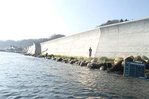 石倉海岸老朽化対策緊急工事(横山地先) 本工事01 完 成