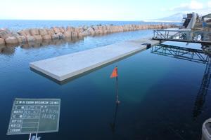 石倉海岸老朽化対策工事1工区(補正) 施工イメージ