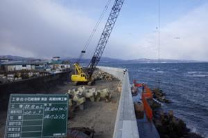 小石崎海岸津波・高潮対策工事 施工イメージ