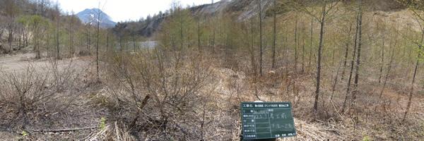 駒ヶ岳地区(テントウ右の沢)復旧治山工事 着工前