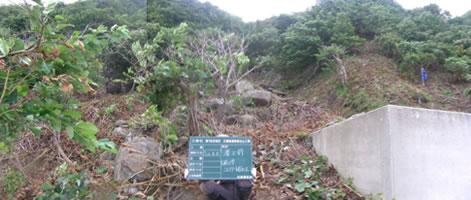 第1栄浜地区災害関連緊急治山工事 第1号谷止工 着工前