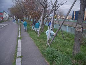 亀田川を美しくする会 亀田川清掃活動