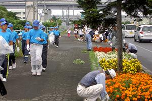 はこだて花かいどう 函館新道植栽活動