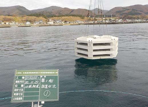 北海道津軽海峡地区小安東部増殖場造成工事 ブロック設置