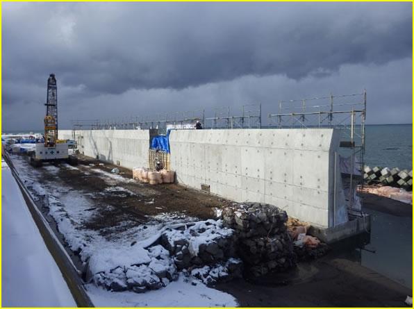 度杭崎海岸高潮対策工事 海岸コンクロートブロック全景 L=50m