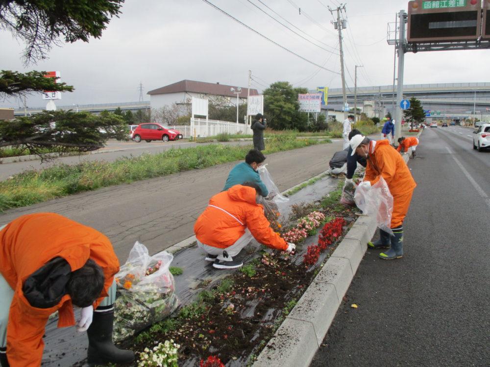 はこだて花かいどう 函館新道植栽活動⑤