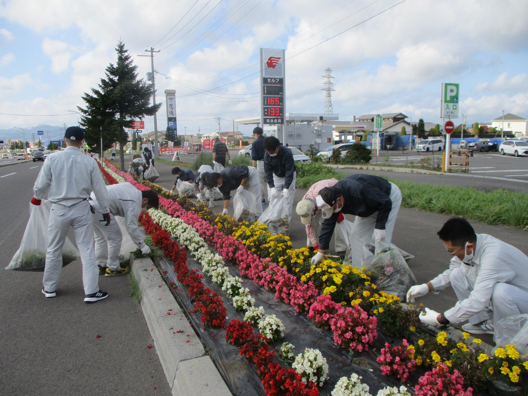 はこだて花かいどう 函館新道植栽活動(9月)