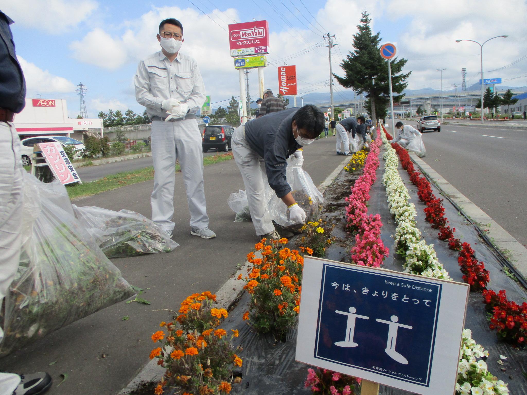 令和3年9月11日(土)はこだて花かいどう 函館新道植栽活動(9月)
